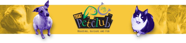 City Pet Club